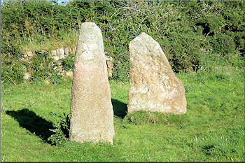 Faughan Round double menhirs