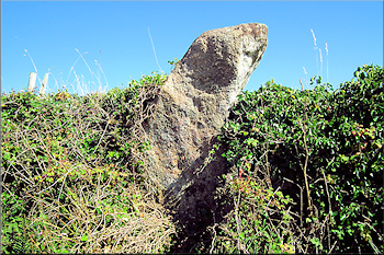 The Seal Stone, Higher Bosistow, West Penwith