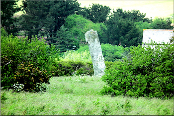 One of the Pipers menhirs near the Merry Maidens