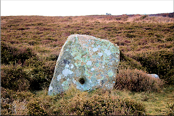 Holed stone at Tregeseal