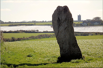 Trelew menhir, a standing stone in West Penwith
